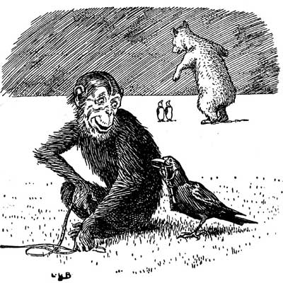 Original illustration of monkey and bird, by L. Leslie Brooke for the kids short story Johnny Crow's Garden