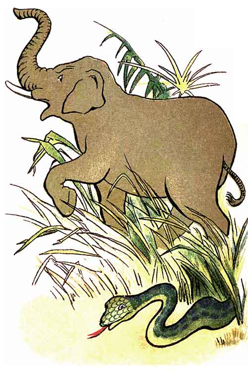 Original illustration of elephant and snake, by EM and MF Taylor for the kids short story The Jungle Baby