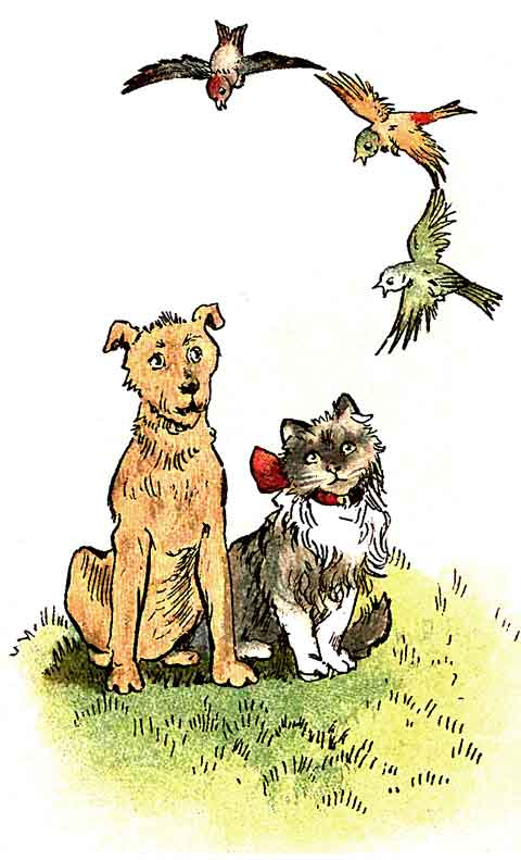 Original illustration of cat and dog talking to bird, by EM and MF Taylor for the kids short story The Jungle Baby