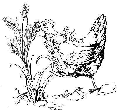Original vintage illustration of hen pecking wheat for children's short story The Little Red Hen