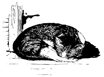 Original vintage illustration of sleeping cat for children's short story The Little Red Hen