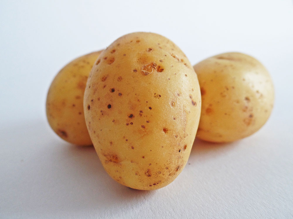 Picture of single potato for baby picture book story online - Veggies
