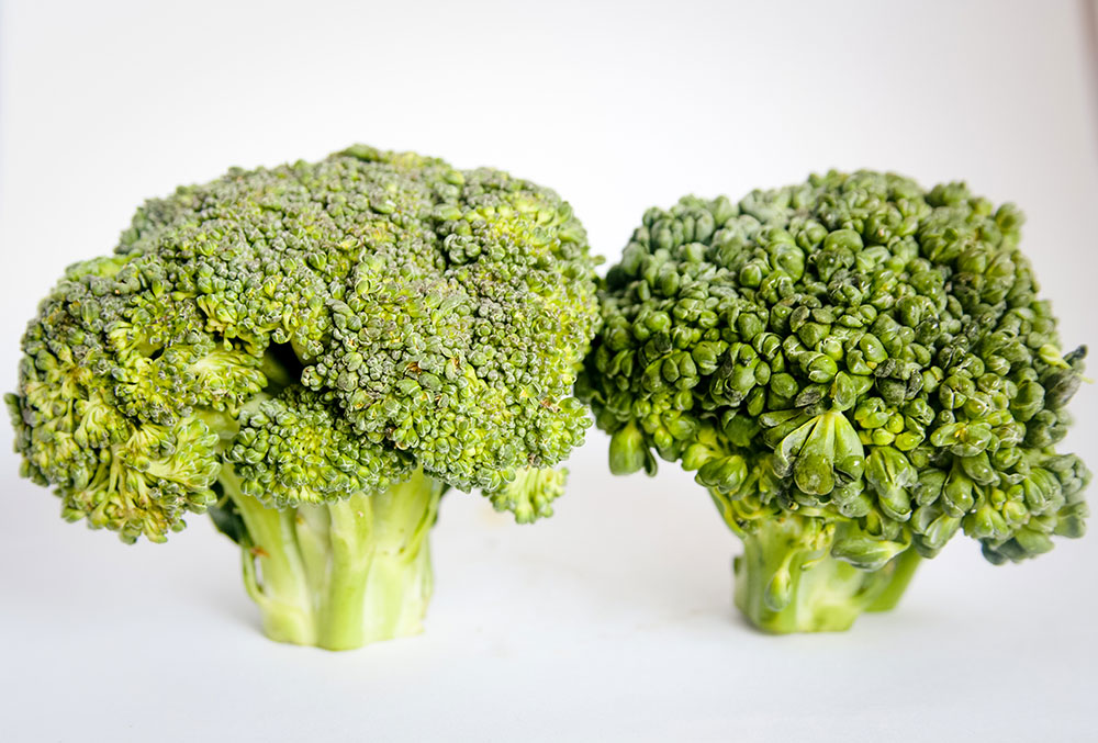 Picture of broccoli for baby picture book story online - Veggies