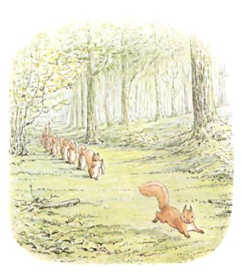 Original Beatrix Potter illustration of squirrels running through forest in a group, for Squirrel Nutkin bedtime story