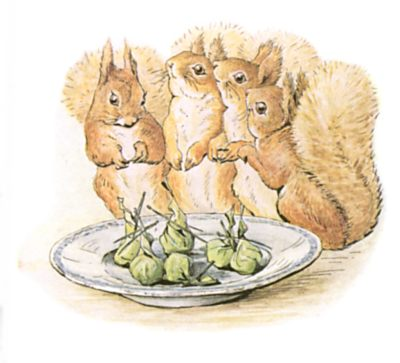 Original Beatrix Potter illustration of squirrels gathered around nuts, for Squirrel Nutkin bedtime story