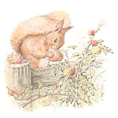 Original Beatrix Potter illustration of squirrels with nut bush, for Squirrel Nutkin bedtime story
