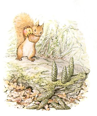 Original Beatrix Potter illustration of squirrel carrying nut in forest, for Squirrel Nutkin bedtime story
