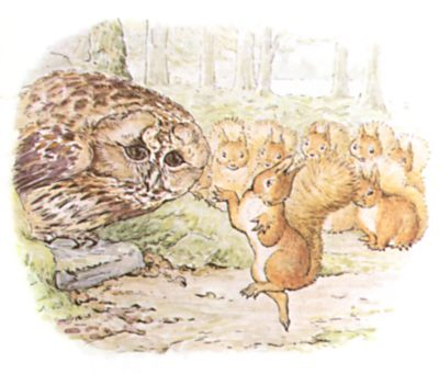 Original Beatrix Potter illustration of owl and squirrels talking together, for Squirrel Nutkin bedtime story