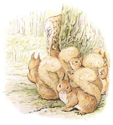 Original Beatrix Potter illustration of squirrels gathered at base of tree, for Squirrel Nutkin bedtime story