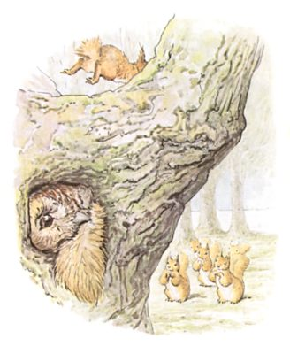 Original Beatrix Potter illustration of owl hiding in tree hole, for Squirrel Nutkin bedtime story