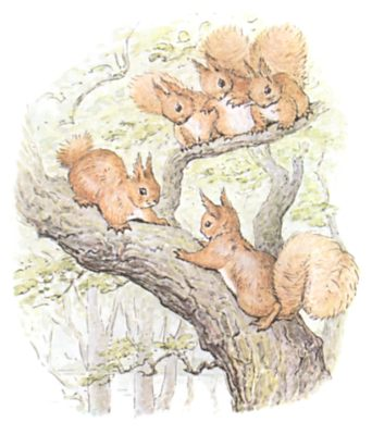 Original Beatrix Potter illustration of squirrels running up tree, for Squirrel Nutkin bedtime story