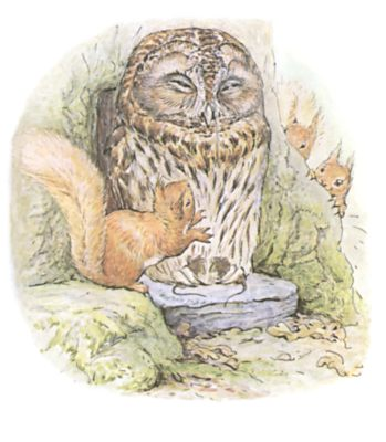 Original Beatrix Potter illustration of owl and squirrels in forest, for Squirrel Nutkin bedtime story