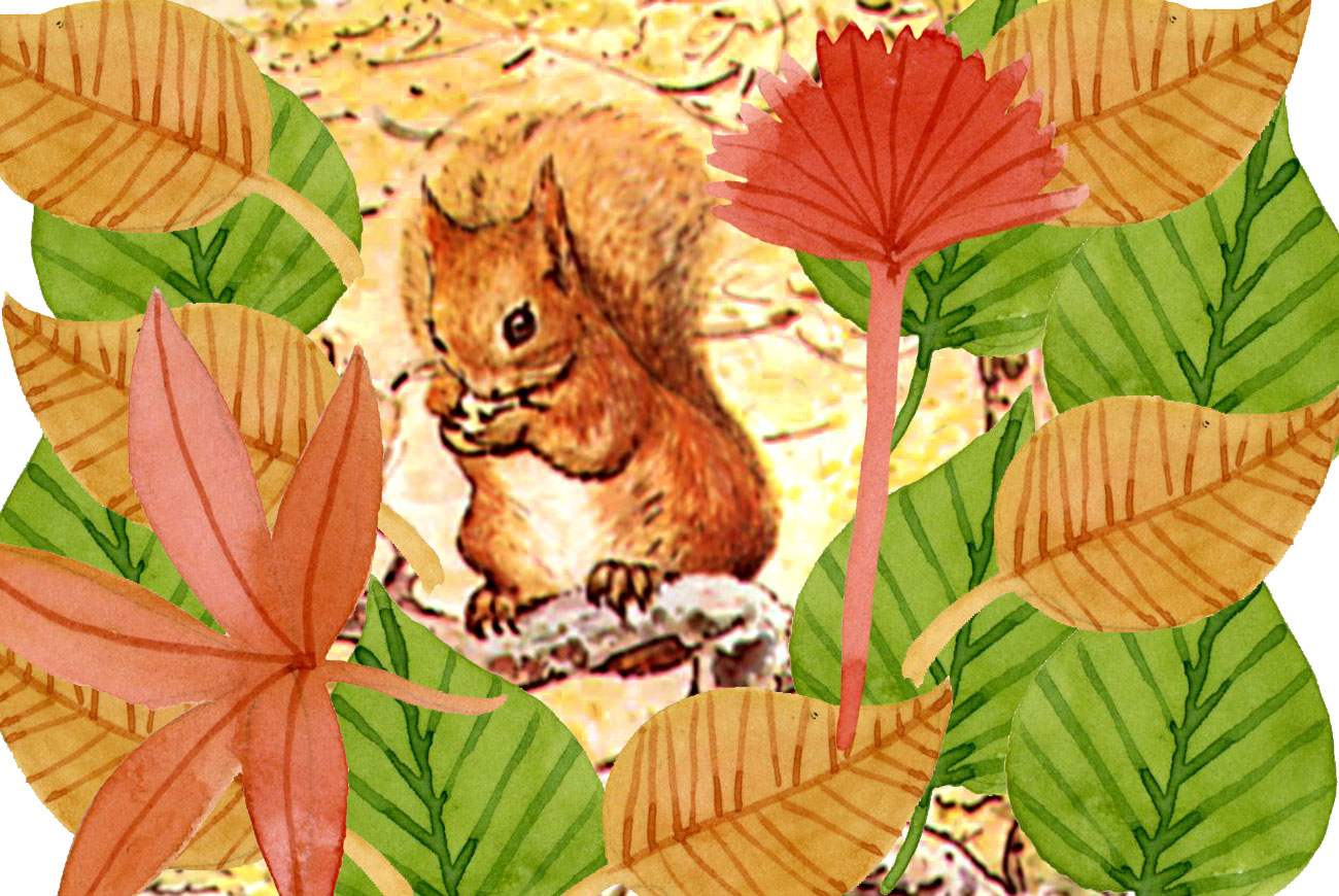 Illustration for Beatrix Potter Squirrel Nutkin bedtime story for children