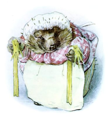 Beatrix Potter illustration of hedgehog and stockings for bedtime story Tiggy Winkle