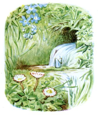 Beatrix Potter illustration of garden burrow and flowers for bedtime story Tiggy Winkle
