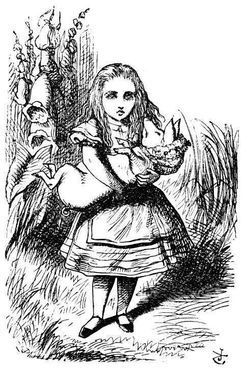 Original children's illustration by John Tenniel of Alice and pig baby from Alice in Wonderland