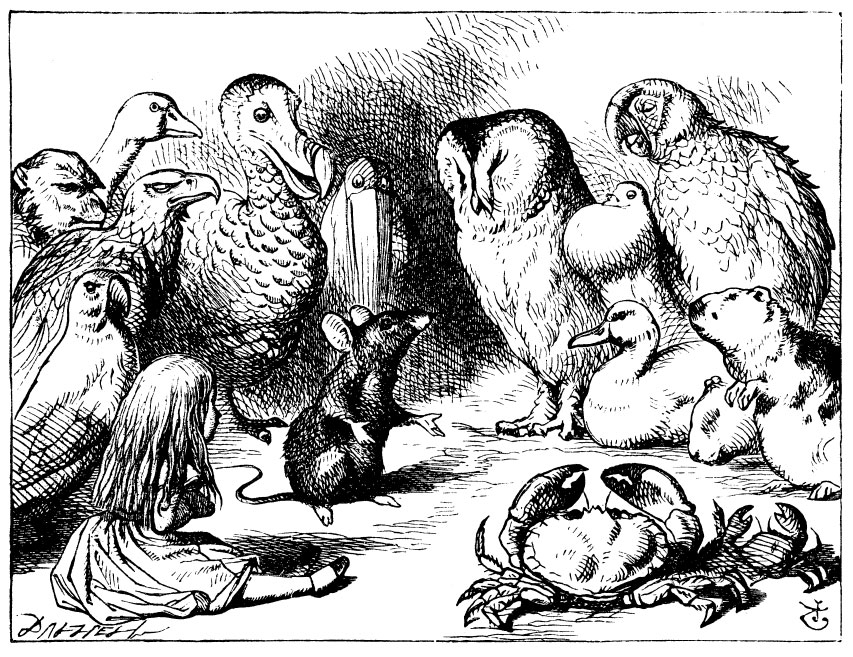 Original children's illustration by John Tenniel of dry story from Alice in Wonderland