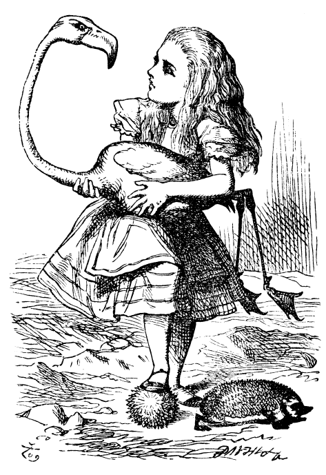 Original children's illustration by John Tenniel of Croquet and  flamingo from Alice in Wonderland