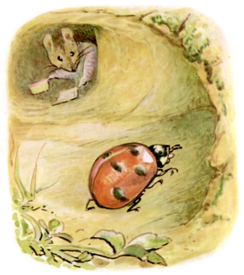 Beatrix Potter bedtime stories Tittlemouse and ladybird bug