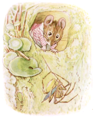 Beatrix Potter bedtime stories Tittlemouse and spider