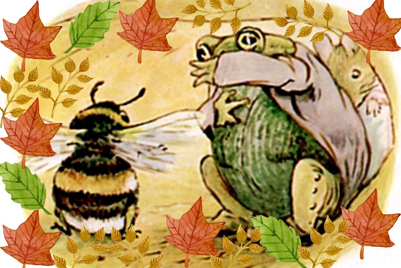 Beatrix Potter children's story Tittlemouse illustration
