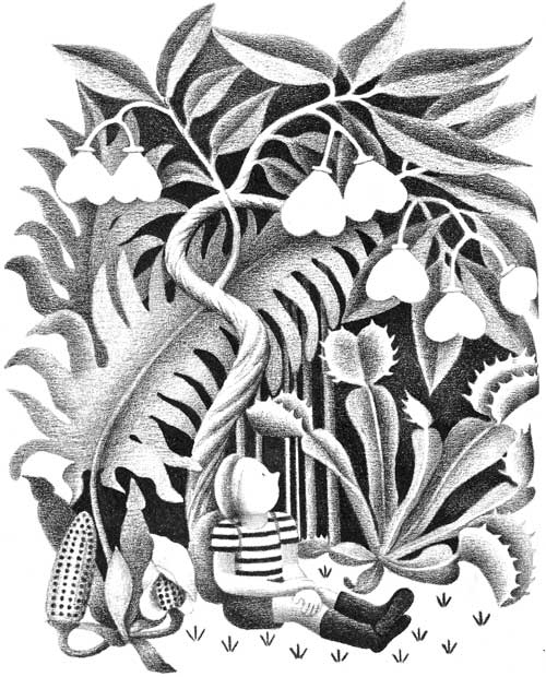 Children's illustration of boy in jungle for story My Fathers Dragon