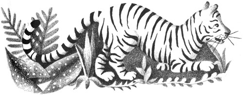 Children's illustration of forest tiger for story My Fathers Dragon