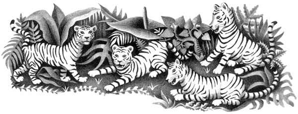 Children's illustration of tigers in jungle for story My Fathers Dragon