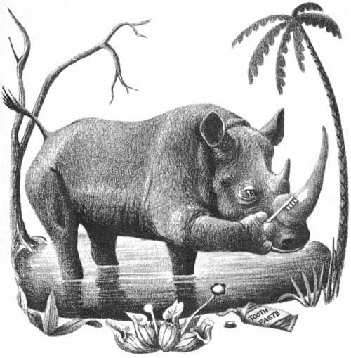 Children's illustration of rhinoceros brushing horn with toothbrush for story My Fathers Dragon