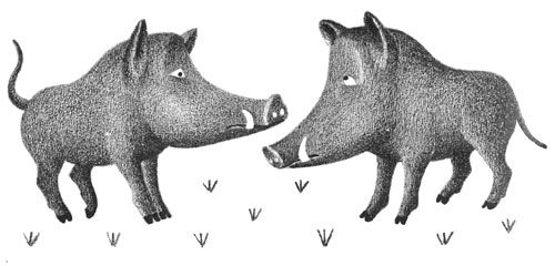 Children's illustration of two wild boars talking for story My Fathers Dragon