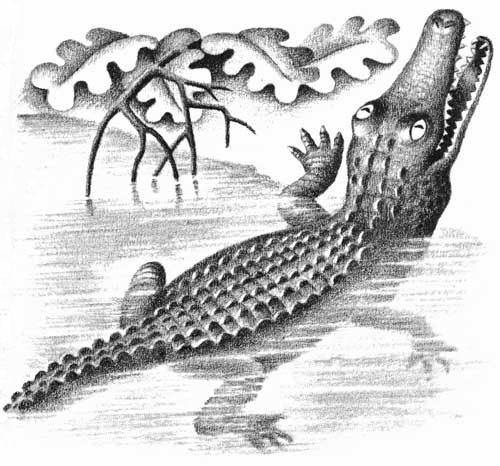 Children's illustration of crocodile in river for story My Fathers Dragon