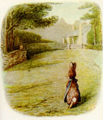 Beatrix Potter illustration Flopsy Bunnies - rabbit on the lawn