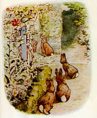 Beatrix Potter illustration Flopsy Bunnies - rabbits gather around door