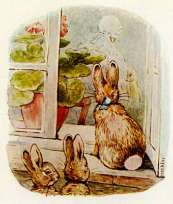 Beatrix Potter illustration Flopsy Bunnies - rabbits in window peeking in