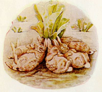 Beatrix Potter illustration Flopsy Bunnies - sleeping rabbits