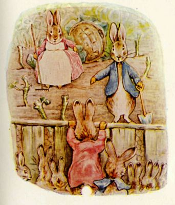 Beatrix Potter illustration Flopsy Bunnies - family seeing Peter Rabbit
