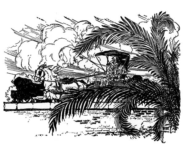 Vintage illustration of horse and buggy and palms for childrens story Wizard of Oz