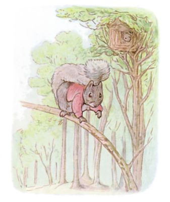 Tale of Timmy Tiptoes by Beatrix Potter - illustration of squirrel balancing on a branch
