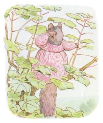 Tale of Timmy Tiptoes by Beatrix Potter - illustration of lady squirrel in pink dress up a tree