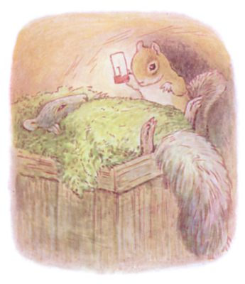 Tale of Timmy Tiptoes by Beatrix Potter - illustration of squirrel and sleeping squirrel