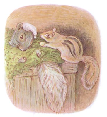 Tale of Timmy Tiptoes by Beatrix Potter - illustration of squirrel in box