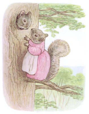 Tale of Timmy Tiptoes by Beatrix Potter - illustration of girl squirrel talking to squirrel in tree
