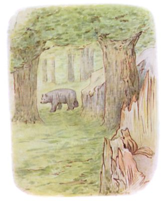 Tale of Timmy Tiptoes by Beatrix Potter - illustration of squirrel watching bear in forest
