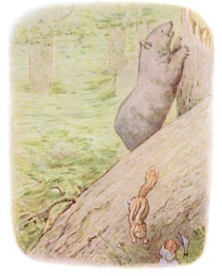Tale of Timmy Tiptoes by Beatrix Potter - illustration of squirrel running down branch