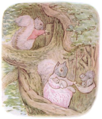 Tale of Timmy Tiptoes by Beatrix Potter - illustration of squirrel family up tree