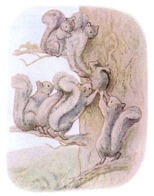 Tale of Timmy Tiptoes by Beatrix Potter - illustration of lots of squirrels up a tree