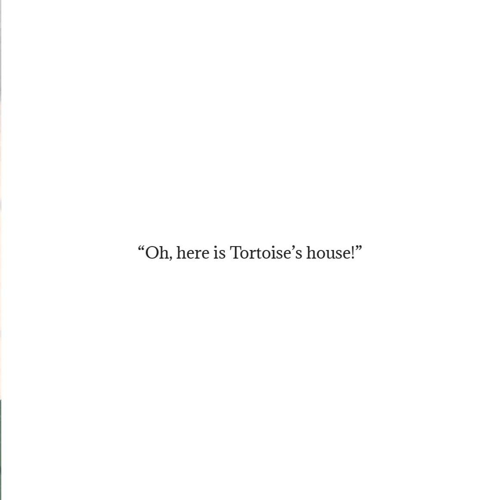 Book page 24 from short story for kids Tortoise Finds His Home by Book Dash