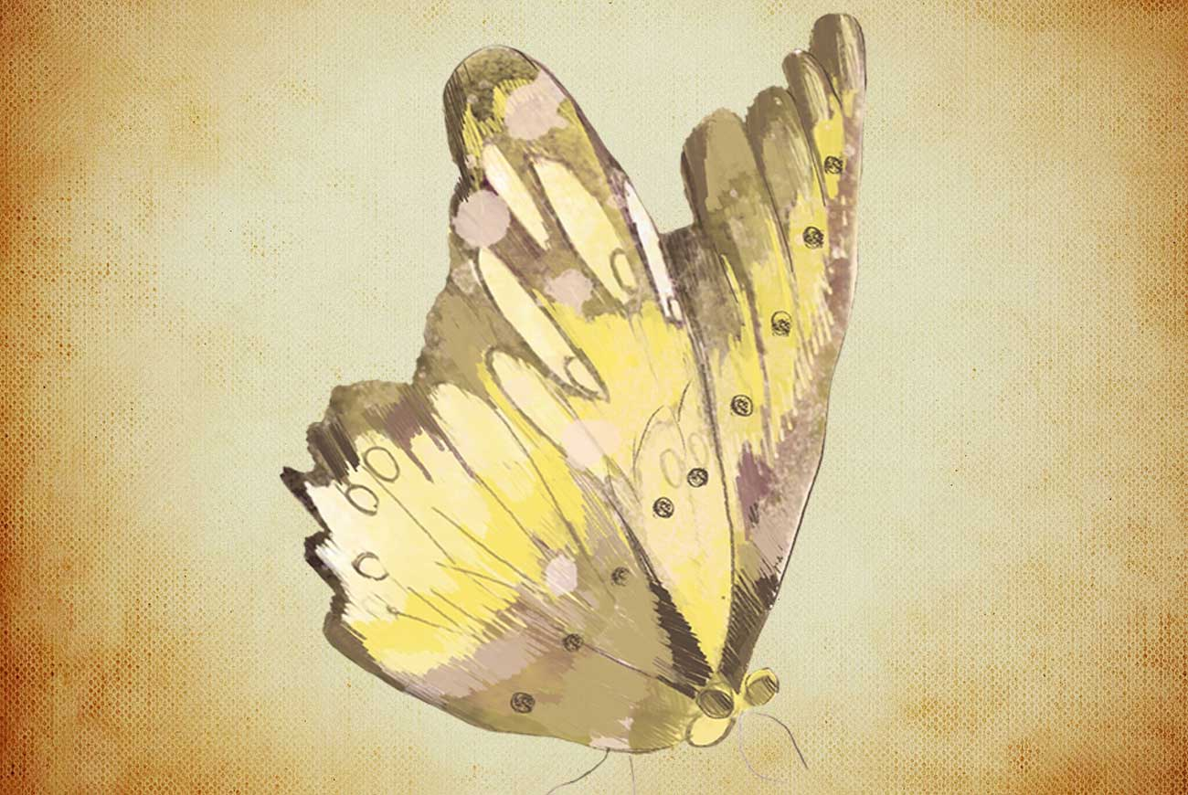 Illustration for Katherine Mansfield's 'Butterfly Laughter' - poems for kids