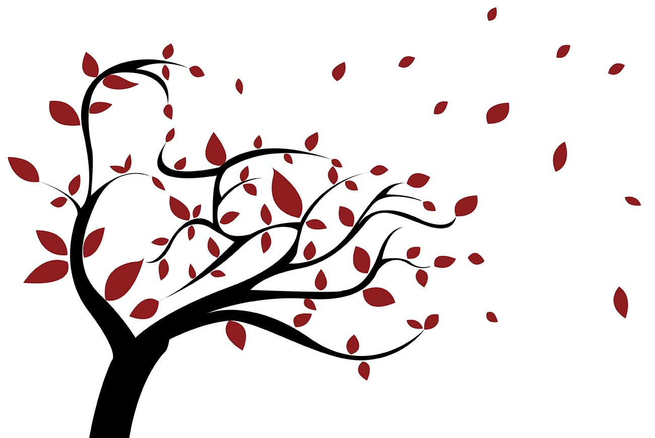 Illustration of tree and leaves for Solemn Wind kids poem by Katherine Mansfield