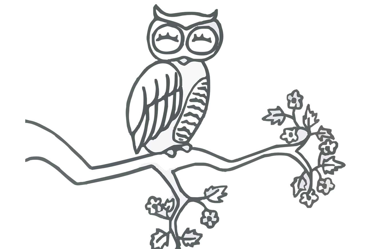 Lullaby - poems for kids - illustration of sleeping owl